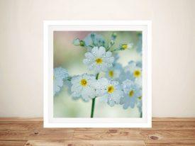Daisy Floral Canvas Art by Noel Buttler