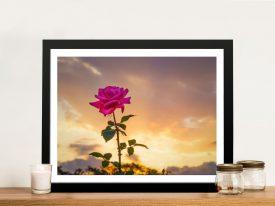 Vigilent Rose Wall Art by Noel Buttler