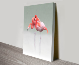 Pink Flamingos Pair Wildlife Wall Art Killara Sydney Australia