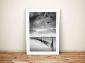 Beach Bones Black and White Wall Picture Art Print Australia