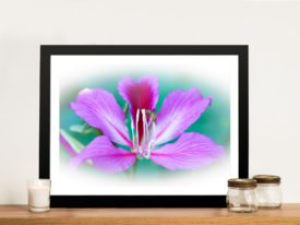 Pink Orchid Flower Framed Wall Art