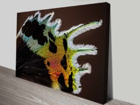 The Wing of a Shimmering Madagascan Sunset Moth Custom Print
