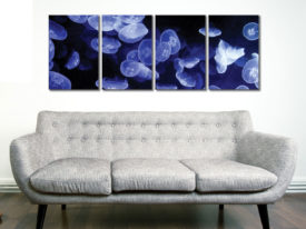 jellyfish 4 panel canvasJellyfish 4 Panel Canvas Art Prints