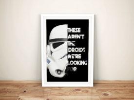 Star Wars Storm Trooper Framed Wall Art