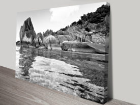 Tropical Reflections Black and White Canvas Wall Art