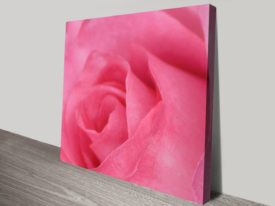 pink-rose-canvas-print_preview