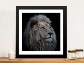Proud Lion Framed Wall Art