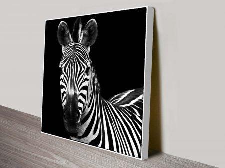 Black and White Zebra Square Canvas Wall Art Print