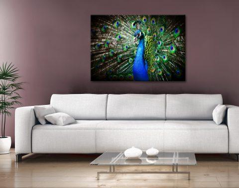 Amazing Peacock Canvas Artwork Brisbane