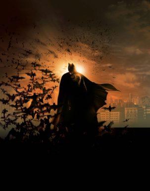 Batman Begins Pop Art Poster