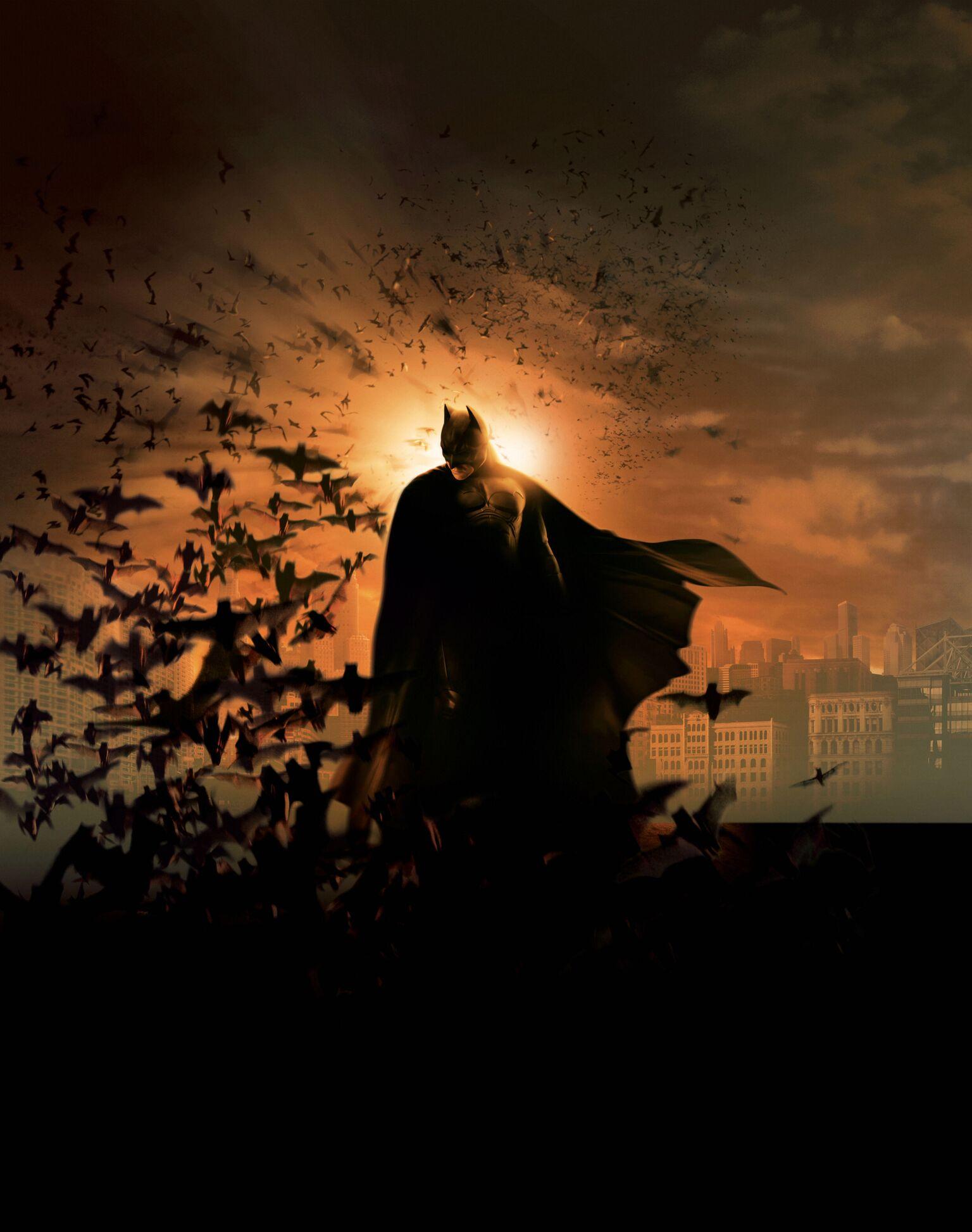 Batman Begins Pop Art Poster Wall Hangings | Christian ...