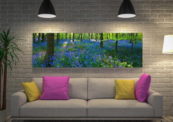 Buy Bluebell Wood Cheap Panoramic Art AU