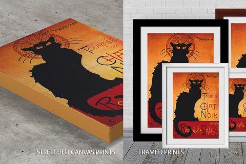 chat noir Quality Print
