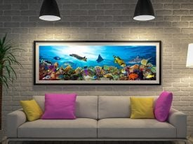 Buy a Canvas Panoramic Print of Coral Reef