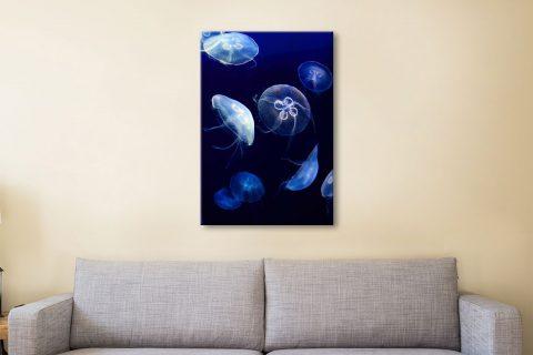 Buy Jellyfish Canvas Art Great Gift Ideas AU