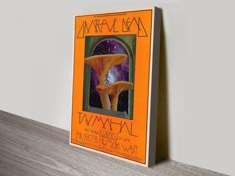 Mushroom Man Poster Canvas Print