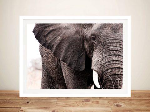 Elephants Tear Framed Wall Art Print