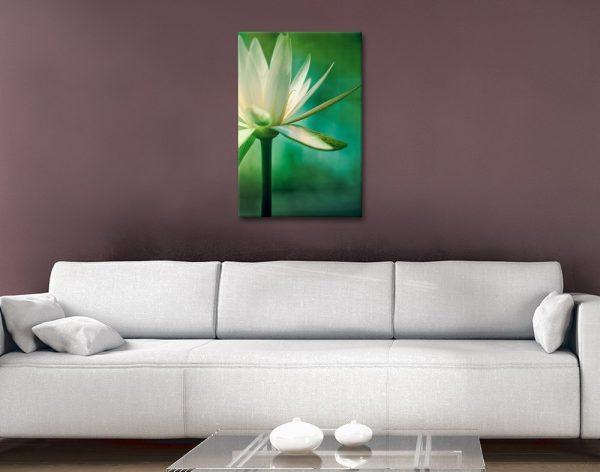 Lotus Flower Floral Art Online Gallery Sale