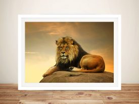 Majestic Lion Animal Wall Art on Canvas