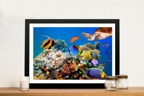 Framed Underwater Sealife Art for Sale AU