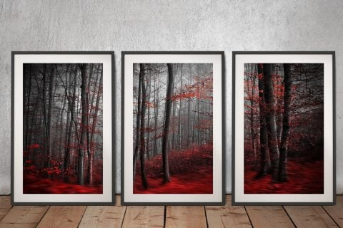 Framed Red Wood Triptych Art for Sale AU