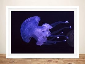 Dangerous Elegance Jellyfish Wall Art