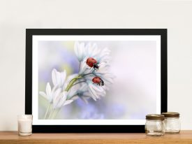 Two Ladybirds Framed Wall Art