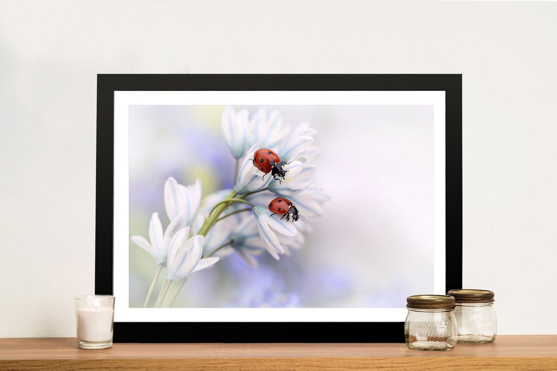Two Ladybirds Framed Wall Art