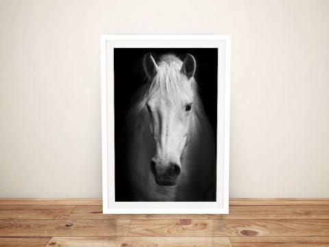 Black and white horse Framed Wall Art