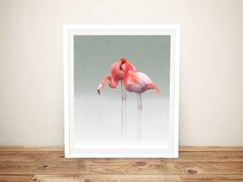 Pink Flamingos Bird Wildlife Canvas Australia