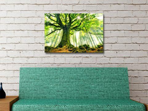 Green Forest Canvas Art Australia