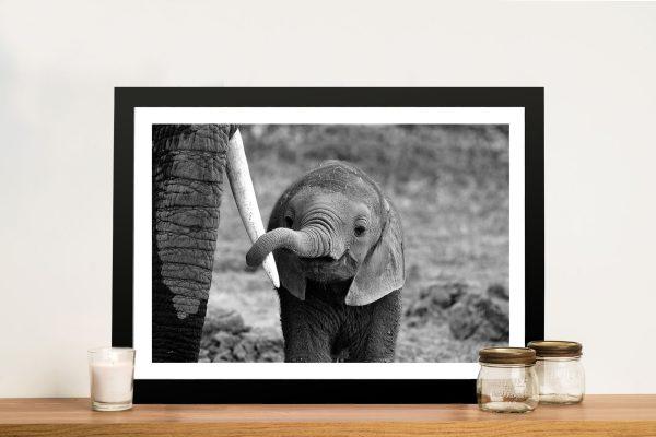 Baby Elephant Black and White Framed Wall Art