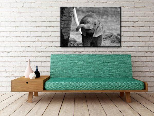 Baby Elephant Wall Canvas Decor