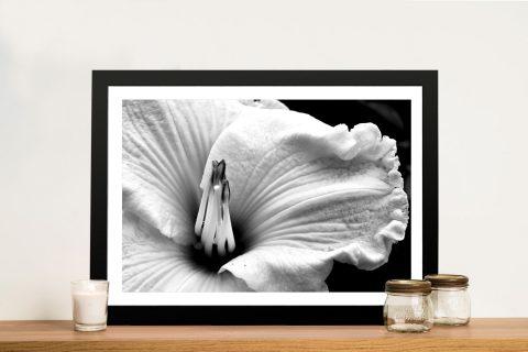 Black & White Bloom Framed Canvas Print