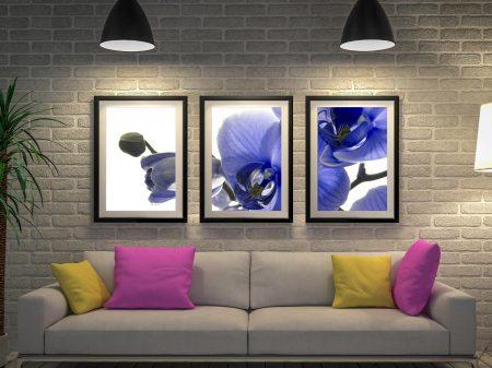 Blue Orchid Framed Wall Art