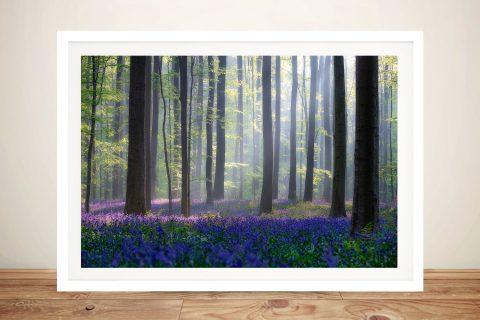 Buy Bluebell Woods Framed Canvas Art