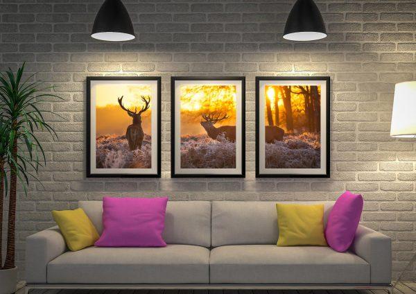 Buy Sunset Pair of Stags Stunning 3-Panel Art