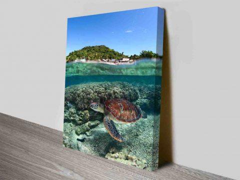 Sea Turtle Ocean Photographic Wall Art