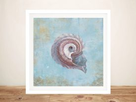 Buy Treasures from the Sea III Framed Wall Art