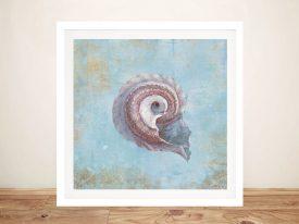 Buy Treasures from the Sea III Framed Wall Art