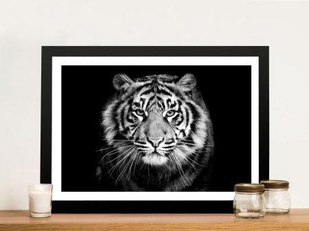 White Tiger Framed Canvas Art