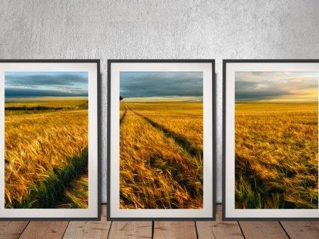 The Wheat Path Framed Triptych Wall Art
