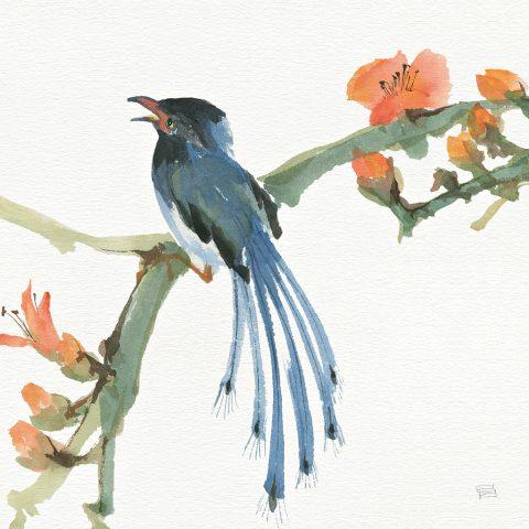 Formosan Blue Magpie Wonderful Wall Art By Chris Paschke