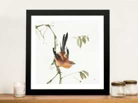 Mountain Bush Warbler Artwork