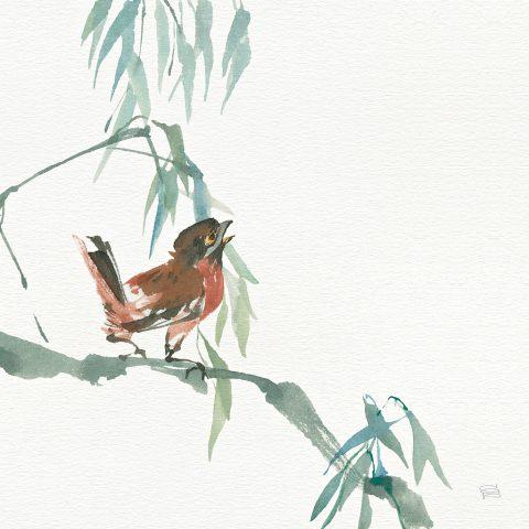 Russet Sparrow By Chris Paschke Cheap Canvas Prints