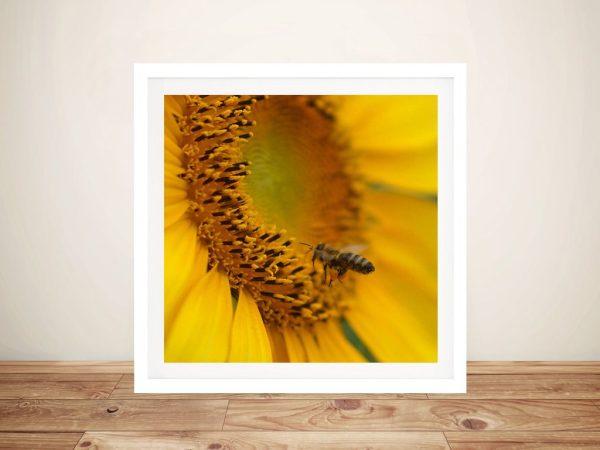 Sunflower Bee Framed Wall Art