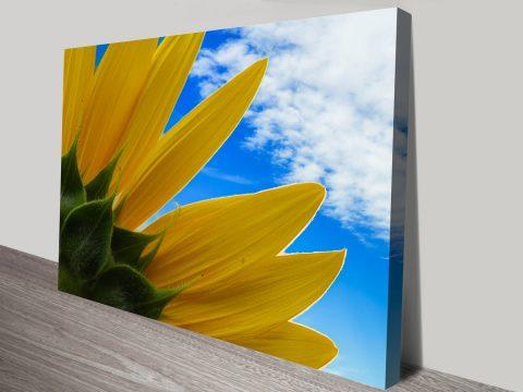 Sunflower Skies Australian Art Gift Ideas