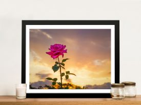 Vigilent Rose Wall Art by Noel Buttler