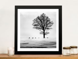 Roe Deer Framed Wall Art