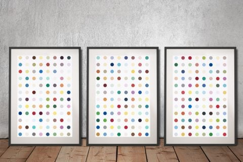 Damien Hirst Xylosidase 3 Piece Framed Artwork